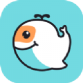 尼諾app