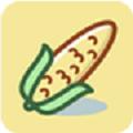 玉米短视频