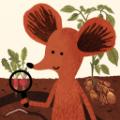 小棕鼠百科