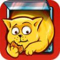 猫咪节食之旅