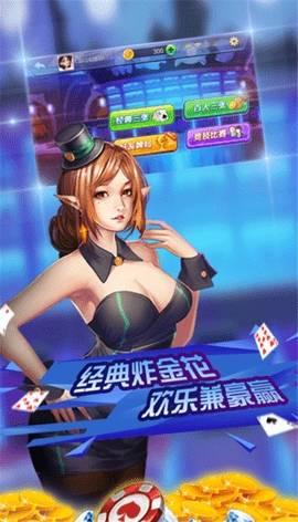 环华娱乐棋牌截图