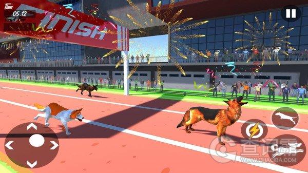 狗狗赛跑模拟器