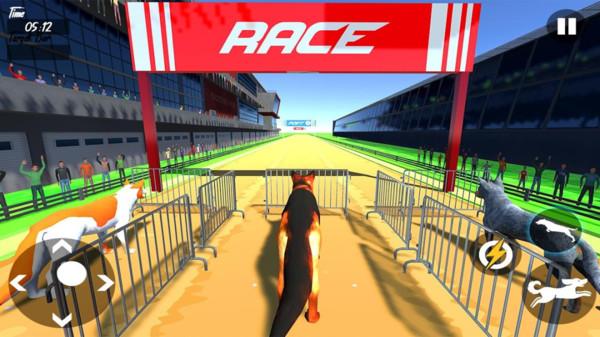 狗狗赛跑模拟器截图