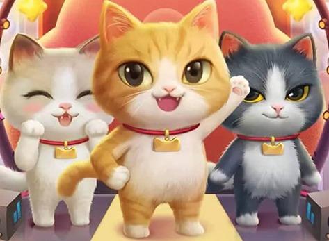 2020淘宝双11超级星秀猫活动怎么玩  双11养猫攻略大全