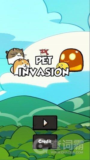 宠物入侵动物大战