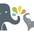 大小象亲子app
