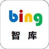 bing智庫