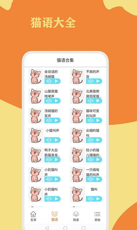 猫狗翻译通
