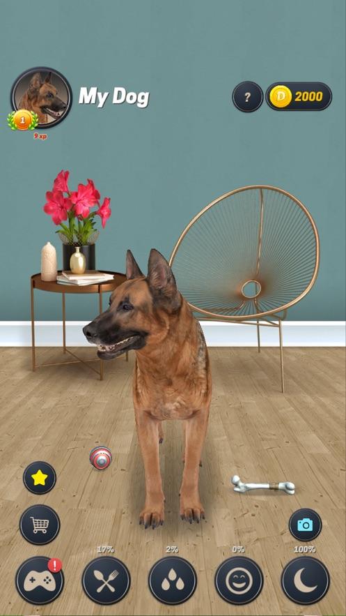 我的狗狗模拟器